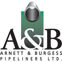 Arnett & Burgess Oilfield Construction Ltd on COSSD