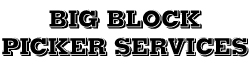 Big Block Picker Services Ltd on COSSD