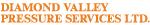 Diamond Valley Pressure Services Ltd on COSSD